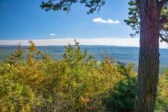 Взгляд осени долина заводи гор и гусыни голубого Ридж стоковое изображение