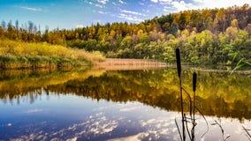Взгляд осени над озером Стоковое Изображение RF