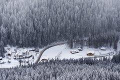 Взгляд от горы Suhardul Mic touris Lacul Rosu прибегает с стоковая фотография