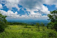 Взгляд от луга горы на верхней горе Whitetop, Grayson County, Вирджинии, США стоковые фотографии rf