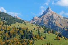 Взгляд от прибрежной полосы озера Waegitalersee к Zindlenspitz в красивых цветах осени, Schwyz, Швейцарии Стоковые Фотографии RF