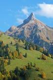 Взгляд от прибрежной полосы озера Waegitalersee к Zindlenspitz в красивых цветах осени, Schwyz, Швейцарии Стоковые Фото