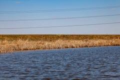 Взгляд от середины озера на воде в которой весна высушила желтые тростники отражен под ясным голубым небом снаружи стоковые изображения