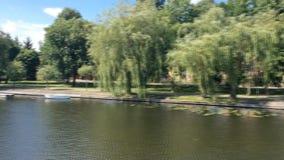 Взгляд от смычка narrowboat по мере того как оно проходит через w -го канал в августе сток-видео