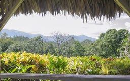 Взгляд от традиционного газебо настелинного крышу в горах пальмы для того чтобы насладиться свежим ветерком и ландшафтом стоковое изображение rf
