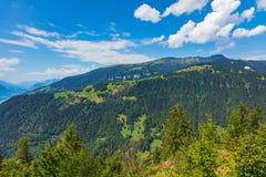 Взгляд от Harderkulm в Швейцарии в лете Стоковые Фото