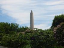 Взгляд памятника Вашингтона Стоковое Изображение