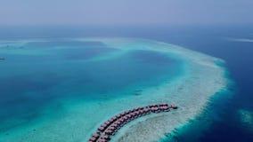 Взгляд панорамы глаза рыб Индийского океана около пляжа Мальдивов акции видеоматериалы