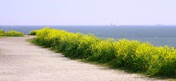взгляд панорамы залива Финляндии Стоковые Изображения RF
