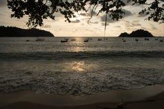 Взгляд панорамы захода солнца и силуэт деревьев и шлюпок на пляже Стоковое Изображение