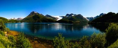 Взгляд панорамы к леднику Nordfjorden и Svartisen, Meloy, Норвегии Стоковая Фотография