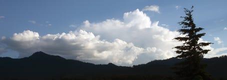 Взгляд панорамы облаков, дерева и гор стоковое изображение rf