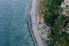 Взгляд парка Стэнли, Ванкувера, Канады стоковое изображение rf
