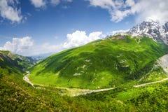 Взгляд пейзажа на горах Svaneti Красивые зеленые гористые местности в Georgia стоковые изображения rf