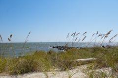Взгляд передвижного залива на острове Алабаме дофина Стоковые Фото