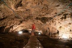 Взгляд пещеры Pestera Muierilor ` s женщин от Gorj County, в Oltenia, Румыния Стоковое Фото