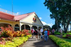 Взгляд плантации ананаса Dole в Wahiawa, назначении путешествия стоковое фото