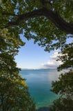 Взгляд побережья осени на яркий день Стоковое фото RF