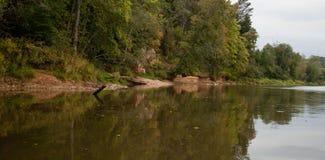 Взгляд побережья реки леса в осени Стоковое Изображение RF