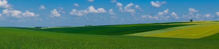 Взгляд поля ландшафта панорамы красивый стоковое изображение