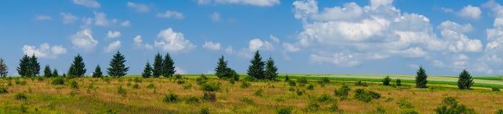 Взгляд поля ландшафта панорамы красивый стоковые фото