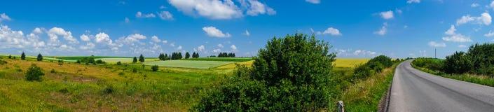 Взгляд поля ландшафта панорамы красивый стоковые изображения rf