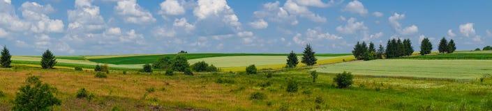 Взгляд поля ландшафта панорамы красивый стоковые изображения