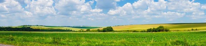 Взгляд поля ландшафта панорамы красивый стоковое фото