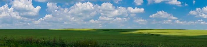 Взгляд поля ландшафта панорамы красивый стоковые фотографии rf