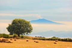 взгляд поля etna aspromonte стоковые изображения
