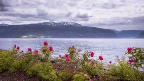 Взгляд промежутка времени на Vangsnes в Норвегии сток-видео