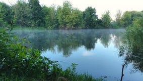 Взгляд промежутка времени реки покрытого с туманом на зоре Украина видеоматериал
