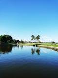 взгляд пруда Стоковая Фотография