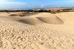 Взгляд пустыни с offroad автомобилем Стоковая Фотография