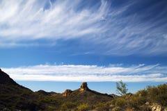 Взгляд пустыни Sonoran Стоковое Фото