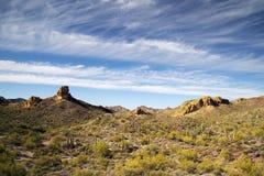 Взгляд пустыни Sonoran Стоковые Изображения