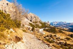 Взгляд пути Siusi Альпов панорамный с солнцем Стоковое фото RF
