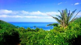 Взгляд рая ладоней и моря carribbean на Playa Brava, Teyrona Nationalpark, Колумбии Стоковая Фотография RF