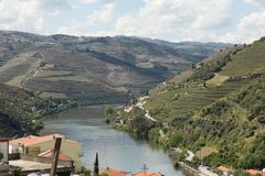 Взгляд реки, имущества, и виноградников Дуэро Стоковая Фотография