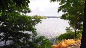 Взгляд реки Dnieper от высокого банка, отслеживая съемку за деревом видеоматериал