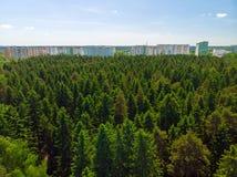 Взгляд сверху дома в лесе в Москве, России Стоковое фото RF