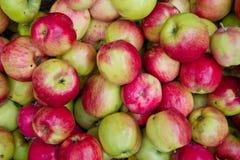 Взгляд сверху зелен-красных яблок Стоковые Изображения