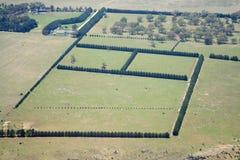 взгляд сверху земли поля Стоковая Фотография RF