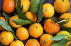 Взгляд сверху Клементинов или tangerines наваливают, цитрусовые фрукты с g Стоковое Изображение