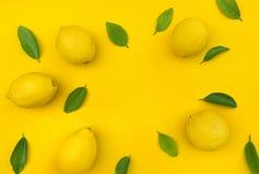 Взгляд сверху лимона и листьев на предпосылке цвета Идеи концепций стоковое изображение rf