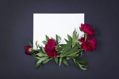 Взгляд сверху листа бумаги с пионами цветет на темной предпосылке с космосом экземпляра Стоковые Фотографии RF