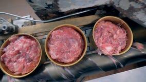 Взгляд сверху мяса в жестяных коробках идя вдоль конвейерной ленты и получая закрытый сток-видео