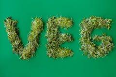 Взгляд сверху надписи veg от свежих заводов microgreens разнообразные овощи, на предпосылке зеленой книги стоковое изображение