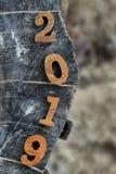 Взгляд сверху 2019 на на деревянном журнале стоковое изображение