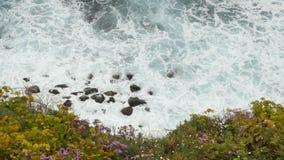Взгляд сверху на океанских волнах разбивая на камнях и утесах Красивые цветки на переднем плане акции видеоматериалы